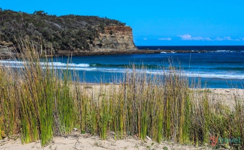 Pebbly Beach, Australia