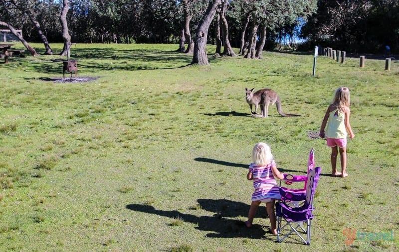 http://www.nationalparks.nsw.gov.au/murramarang-national-park/pretty-beach-cabins/accommodation