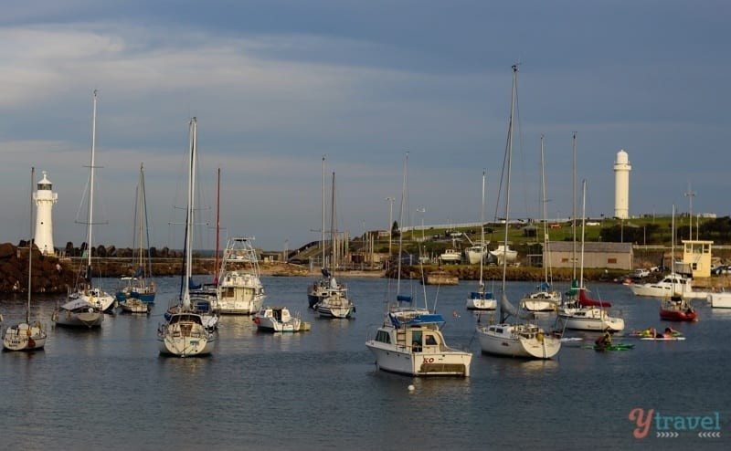 Boat Harbour Wollongong