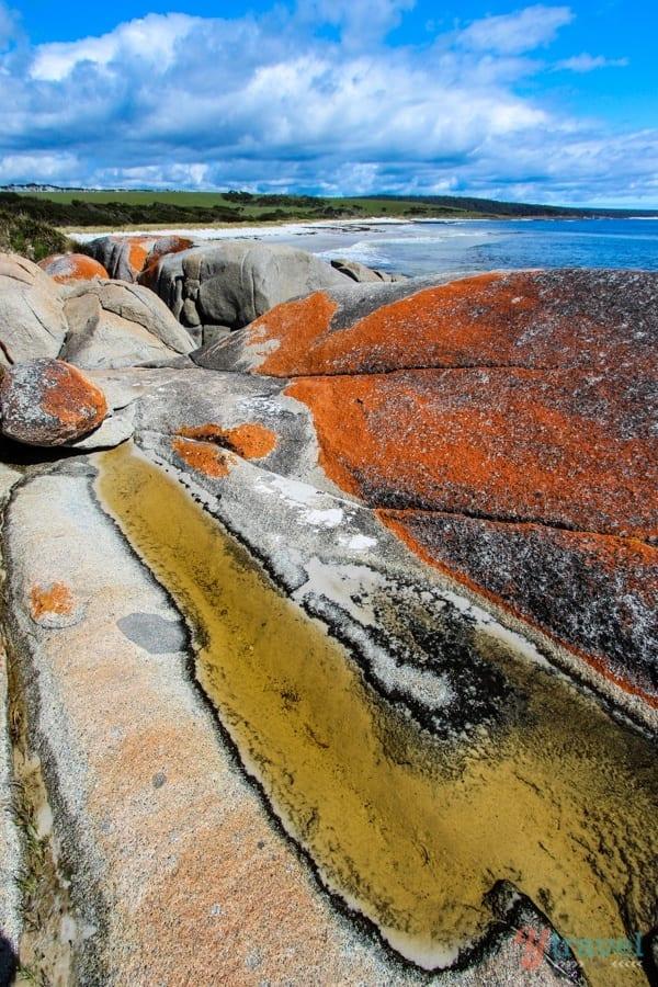 Bay-of-Fires-Tasmania-12 ▷ Comenta sobre los 14 mejores viajes por carretera en Australia de los 7 lugares más hermosos de Oceanía - Soapietv