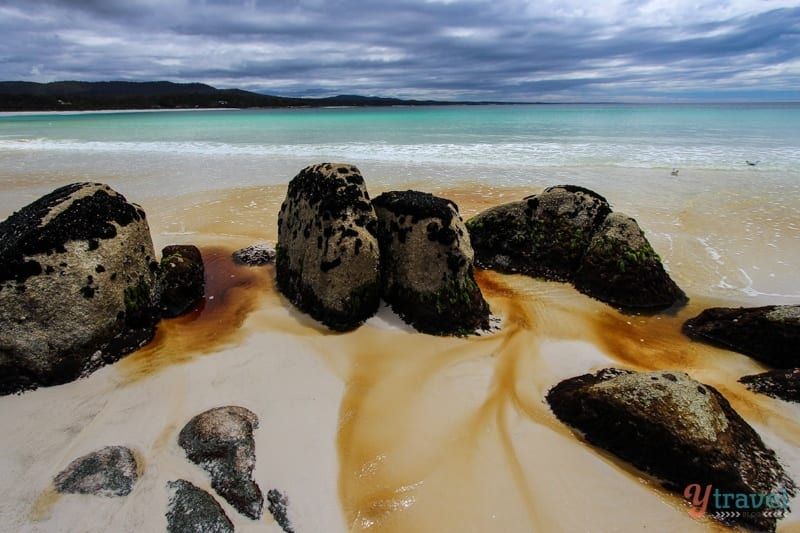 Bay of Fires Tasmania (17)