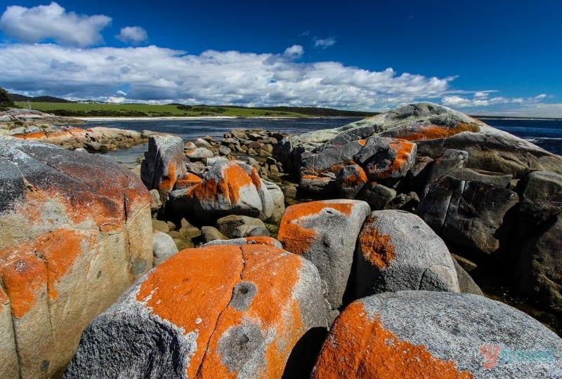 Discover Tasmania - Bay of Fires in Tasmania