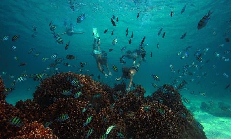 Soneva Kiri - Snorkelling Thailand