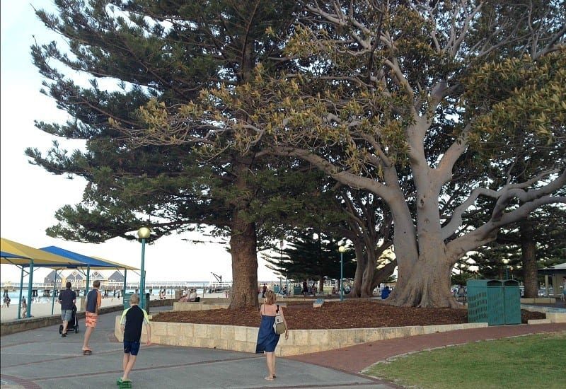 Wandering aimlessly with our kids