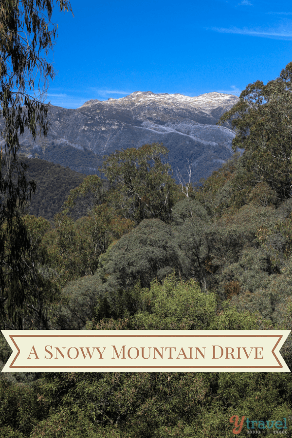 A Snowy Mountain Drive