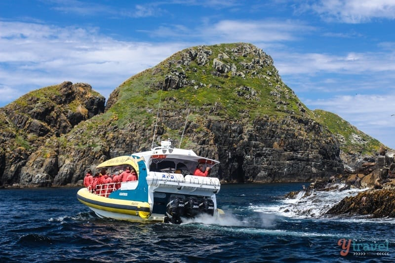 Bruny Island Cruise Tasmania