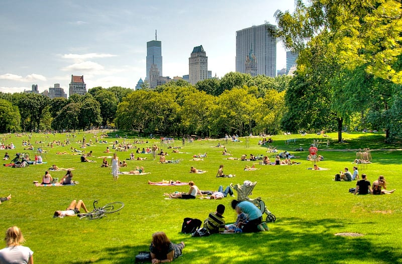 11 ways to enjoy a new york summer for What do in nyc