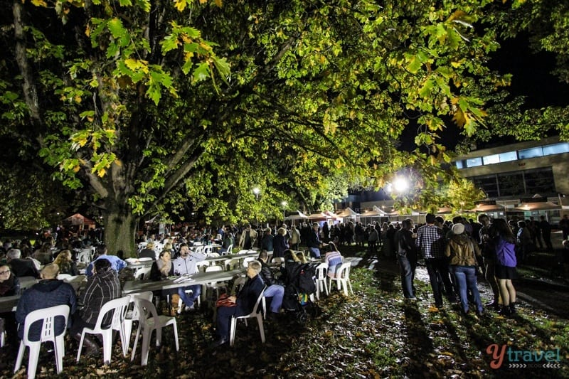 Night Markets - Orange, NSW, Australia