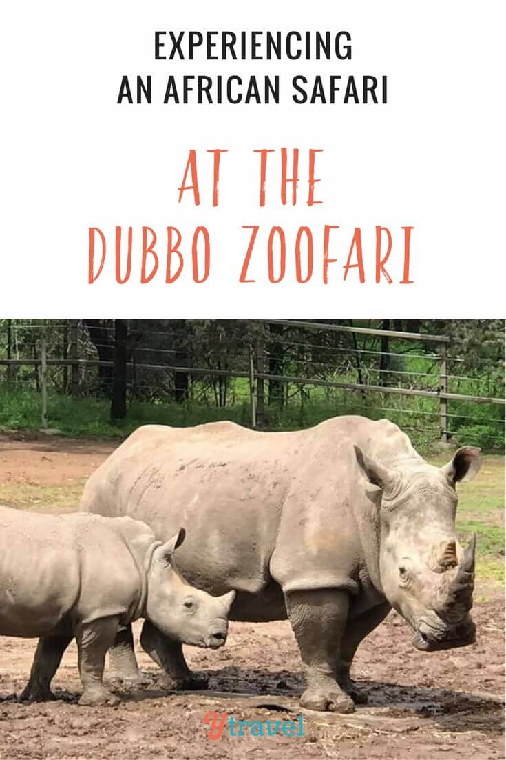 The Western Plains Zoo offers an experience similar to an AFrican safari with their Dubbo Zoofari lodge and experience. Click to read more