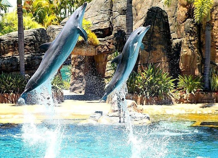 Seaworld - Gold Coast, Queensland, Australie