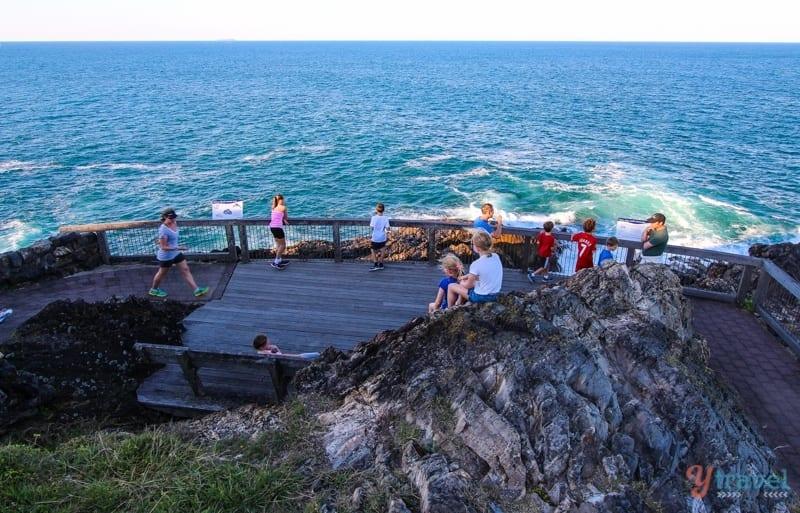End of the walk on Muttonbird Island