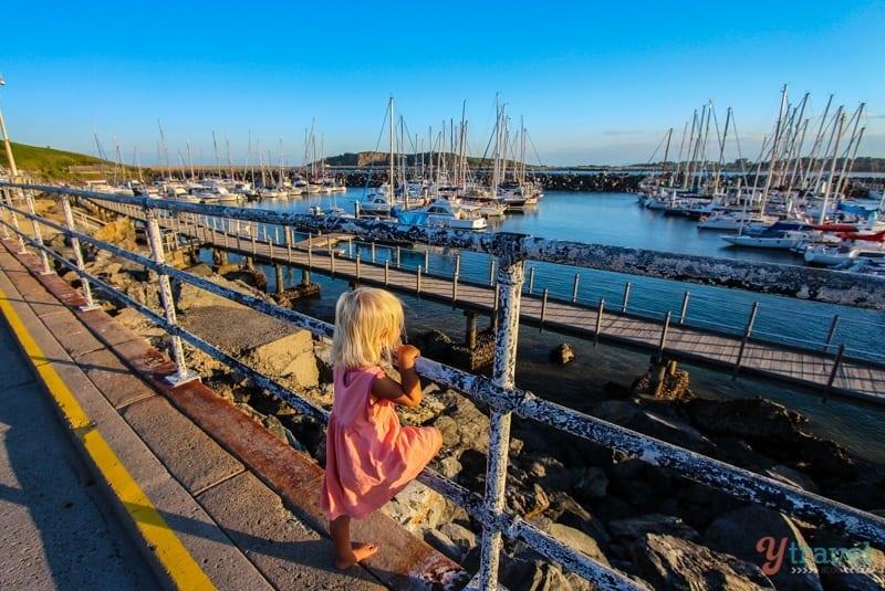 Savannah at the Marina