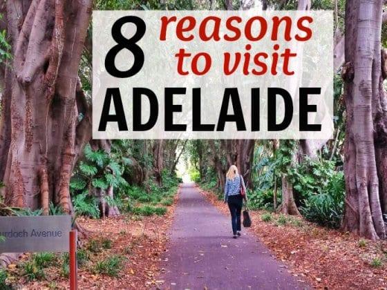 8 Reasons to Visit Adelaide in Australia