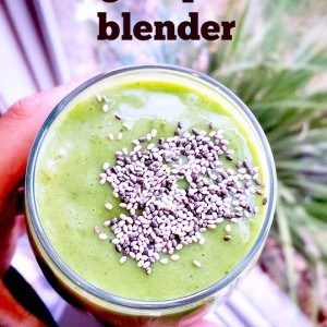 travel high speed blender