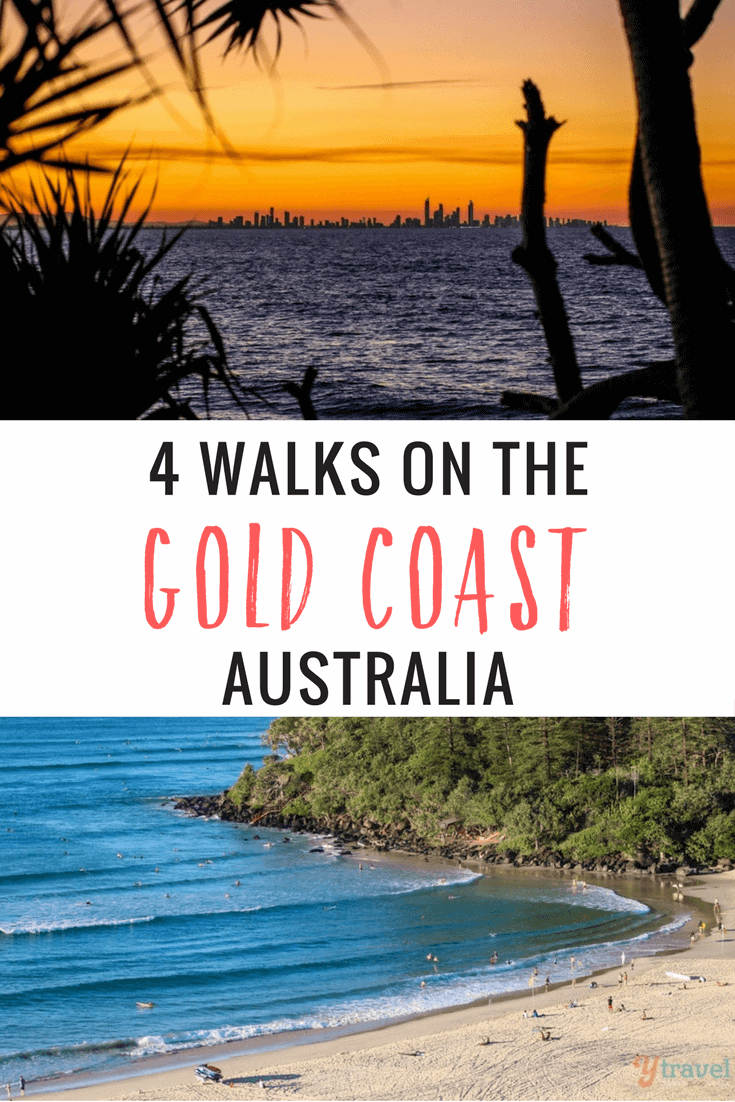 Looking to get active on the Gold Coast? These 4 Gold Coast walks will get you amongst some of the best nature experiences on the coast and hinterland