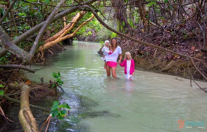 Eli Creek, Fraser Island, Australia