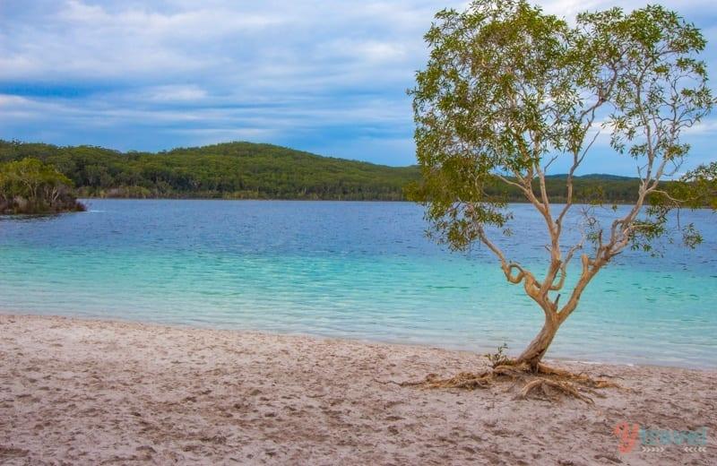 IMG_8696 ▷ Comenta sobre los 14 mejores viajes por carretera en Australia de los 7 lugares más hermosos de Oceanía - Soapietv