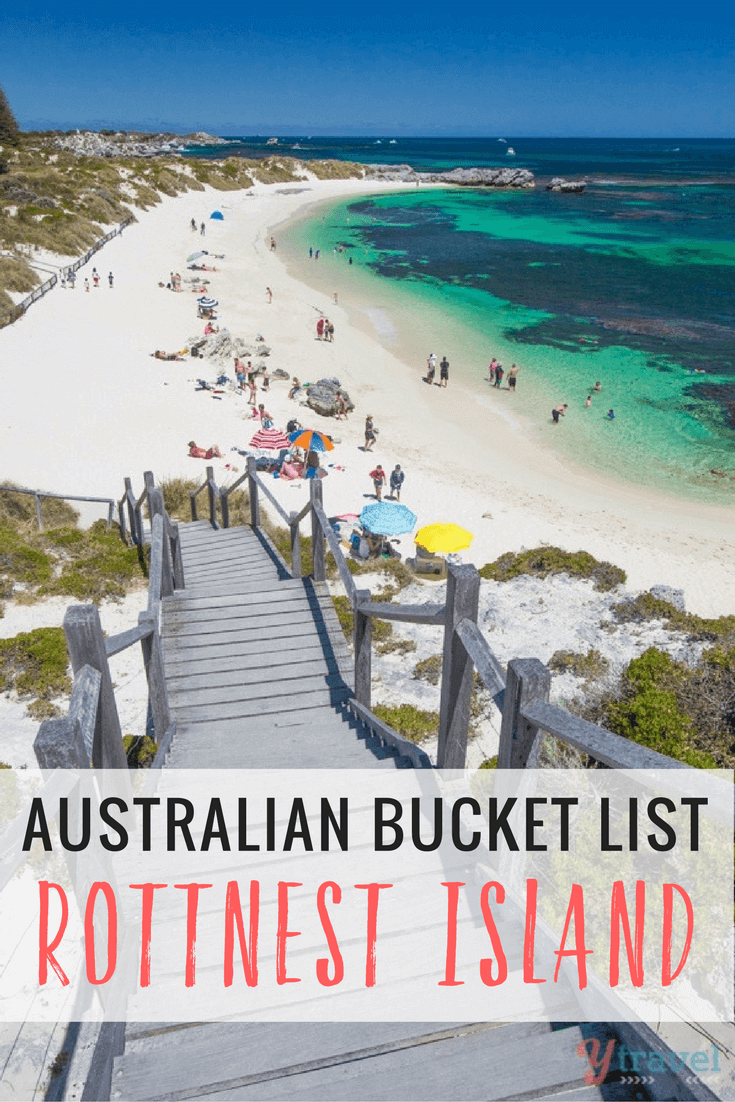 We had Rottnest Island on our Australian bucket list. After looking at these photos I think you will too!