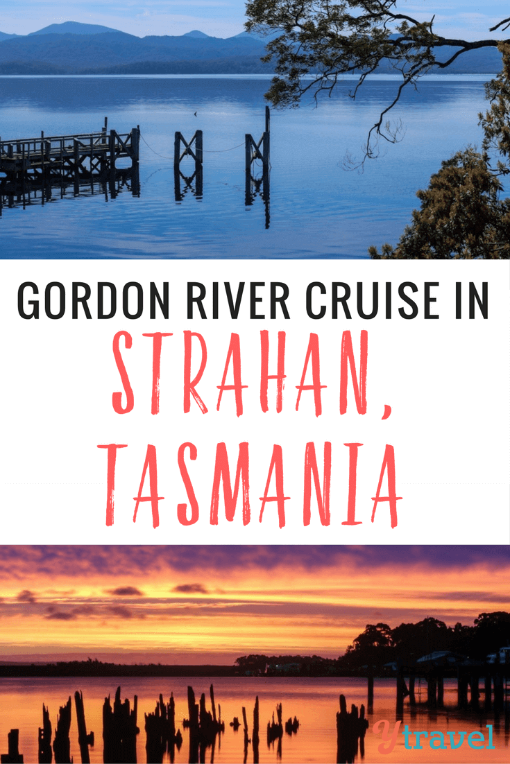 A Gordon River Cruise amongst the ancient rainforest of Tasmania's World Heritage Wilderness Area was a highlight of our month long visit to Tasmania.