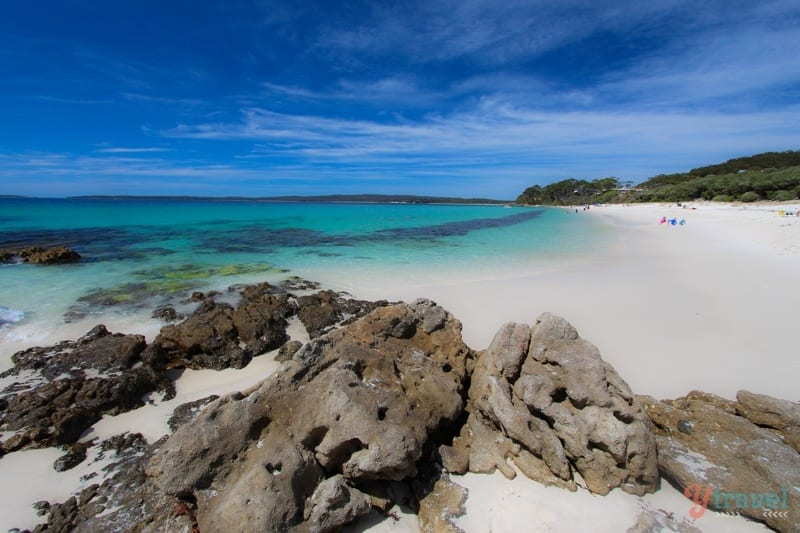 Jervis Bay - one of the best day trips from Sydney, Australia