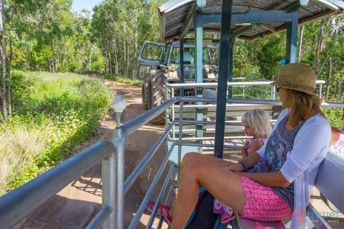 Whitsunday Crocodile Safari, Queensland, Australia