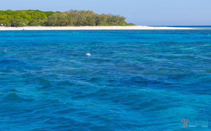 Lady Musgrave Island - Queensland, Australia
