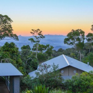 O'Reilly's Rainforest Retreat - Gold Coast Hinterland, Australia