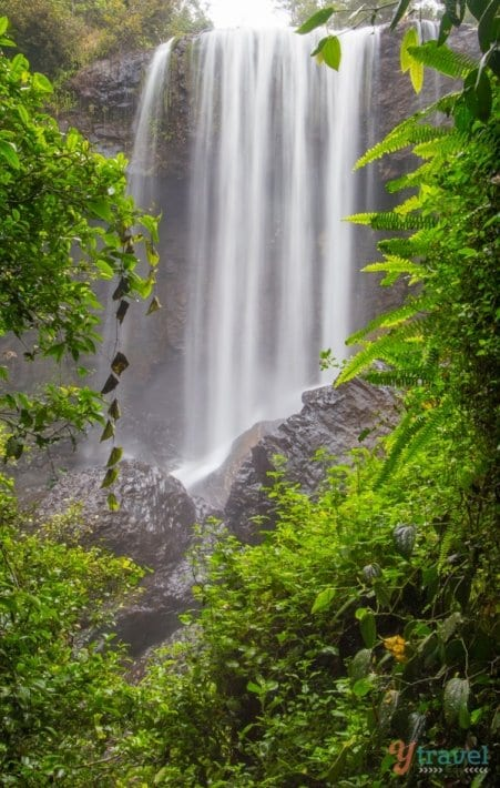 Zillie Falls, Atherton Tablelands, Queensland, Australia