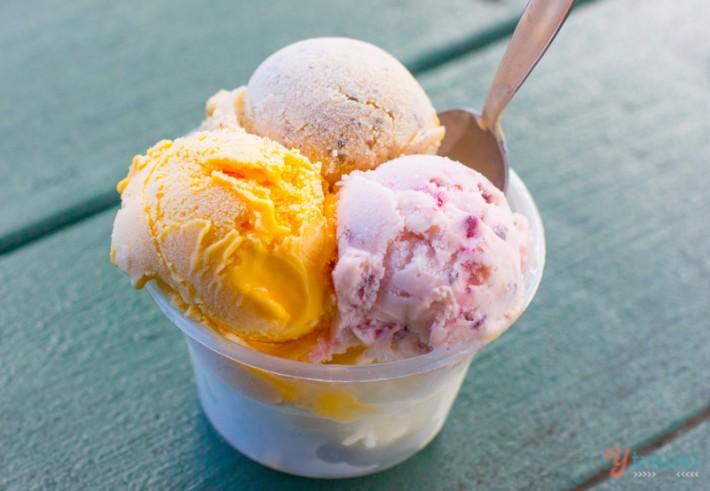Daintree Ice Cream Comapny