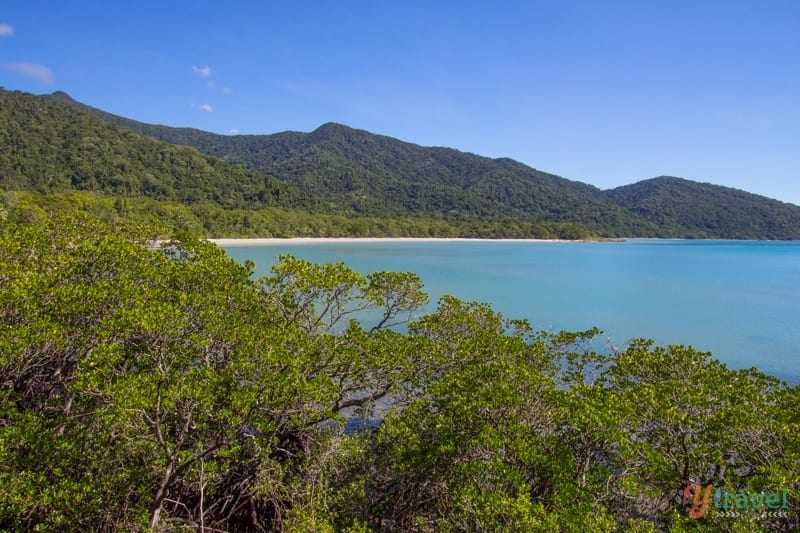 Cape Tribulation - view from Kulki boardwalk