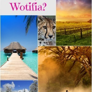 What's your Wotifia