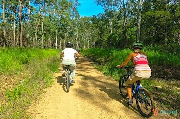 Mountain biking in the Atherton Tablelands, Queensland