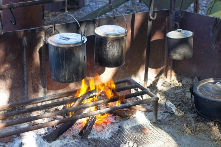 Billy Tea at Texas Longhorns in Australia