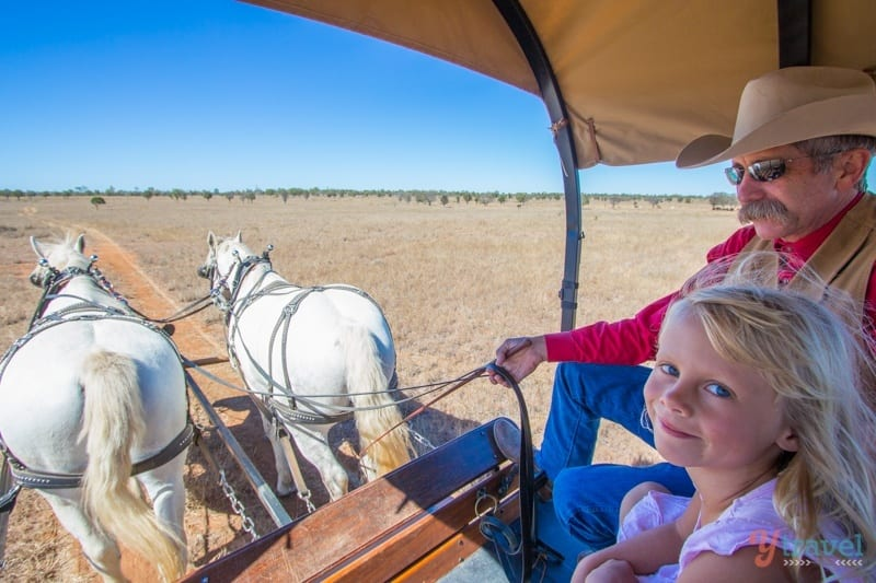 Texas Longhorn Wagon Tours in Australia