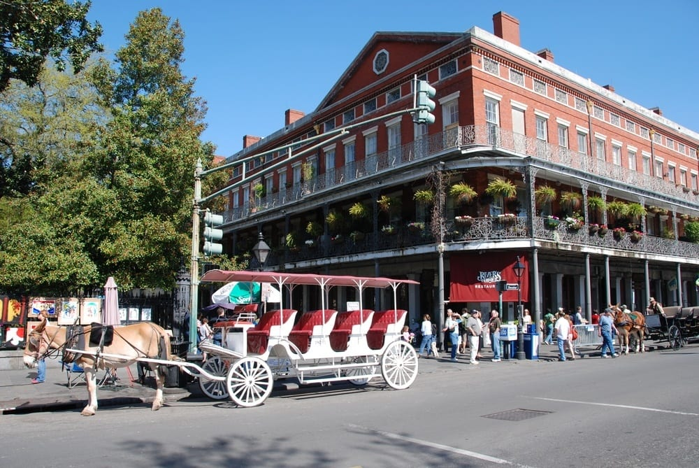 Things to do in new orleans sunday spotlight for Things to do in mew orleans