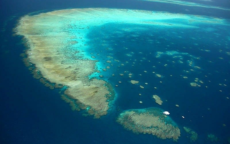 Moore Reef in the Outer Great Barrier Reef - Credit: ReefMagicCruises.com
