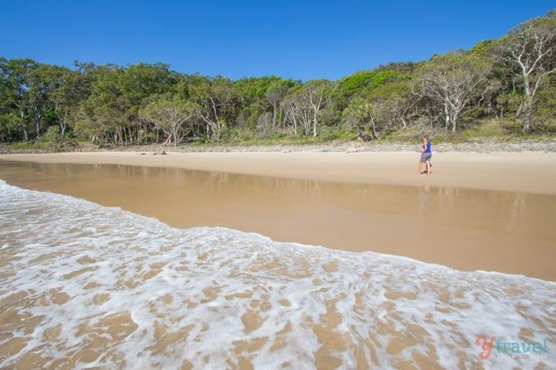 Noosa National Park - Queensland, Australia