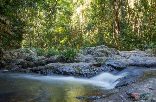 Skyrail Rainforest Cableway - Cairns, Australia