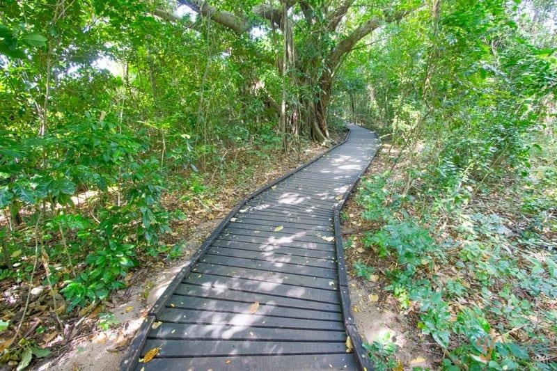 Green Island, Cairns, Australia