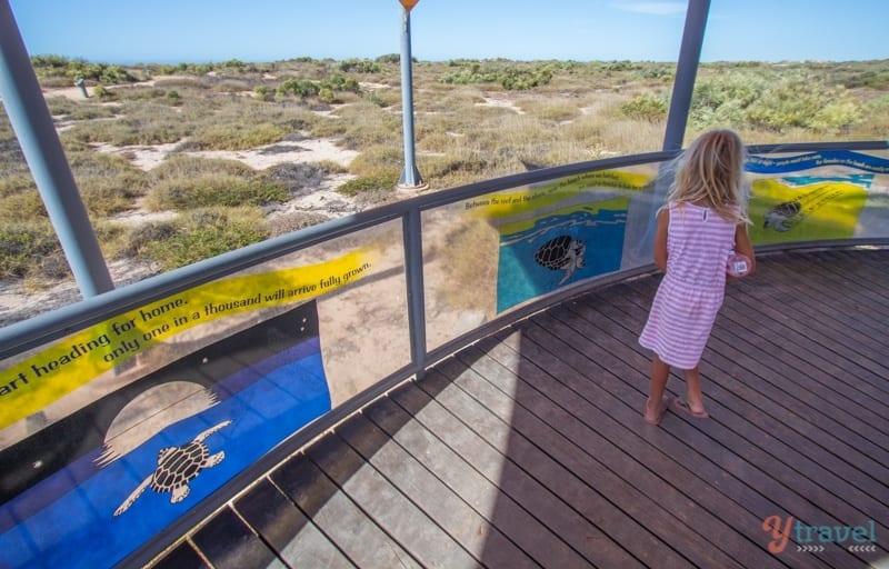 Jurabi Turtle centre - Exmouth, Western Australia