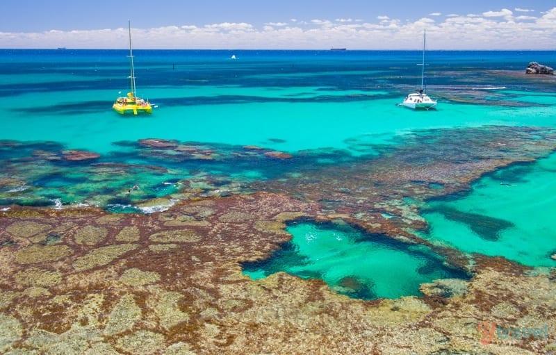 Rottnest Island Australia  city images : Why Rottnest Island Should Be On Your Australian Bucket List