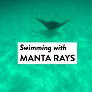Swim with the Manta Rays at Ningaloo Reef, Western Australia
