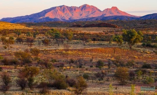 Sunrise at Mt Sonder - West MacDonnel Ranges, Northern Territory, Australia