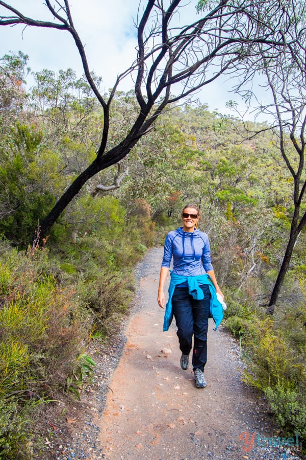 Do the Mt Lofty Summit hike in the Adelaide Hills, South Australia