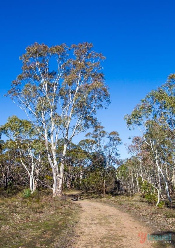 KaiserStuhl Conservation Park, Barossa Valley, South Australia