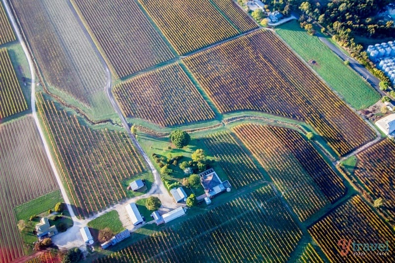 Take a helicopter tour over the Barossa Valley in South Australia