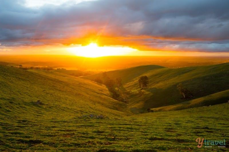 Sunset at Steingarten Vineyard in the Barossa Valley, South Australia