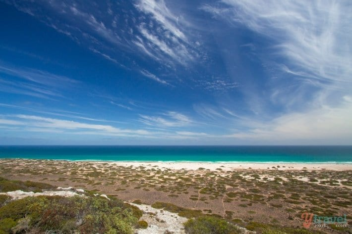 Great Australian Bight Marine Park