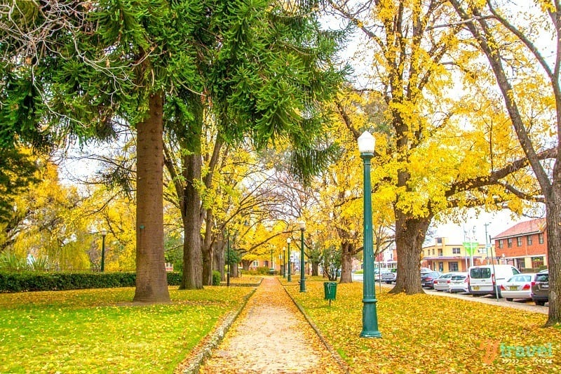 Autumn in Bathurst - one of the best getaways from Sydney, Australia