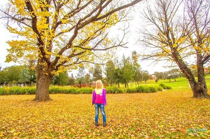 Adventure Playground, Bathurst, NSW
